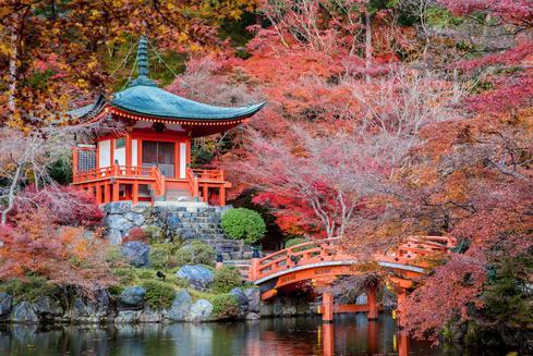 京都的酒店优惠
