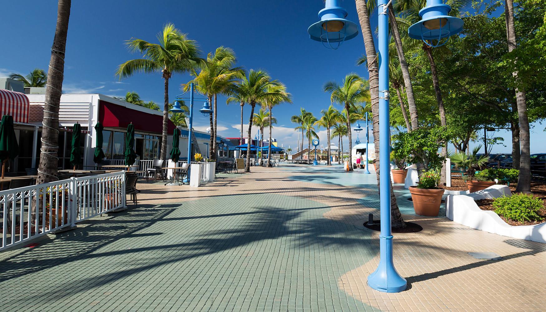 迈尔斯堡 西南佛罗里达国际机场的租车
