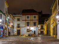 科尔多瓦酒店
