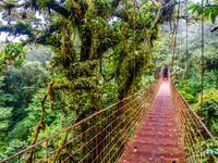 Monteverde酒店