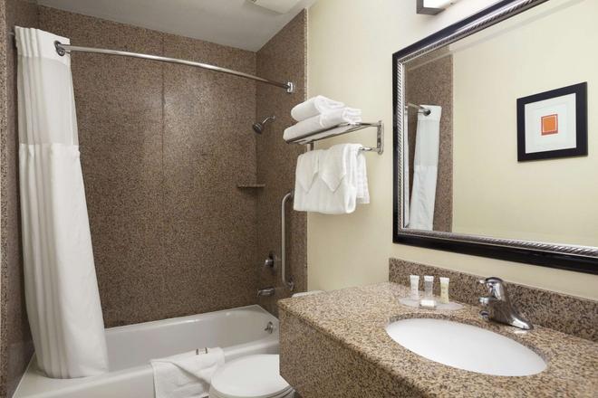 圣地亚哥海洋世界豪生酒店 - 圣地亚哥 - 浴室