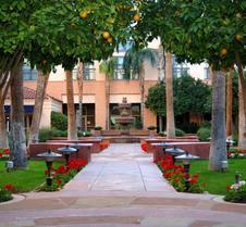 坦帕米慎棕榈酒店