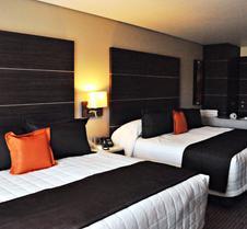 瑞尔阿拉米达日克雷塔罗酒店