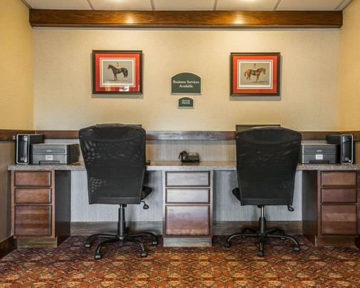 乔治湖克拉丽奥酒店 - 乔治湖 - 商务中心