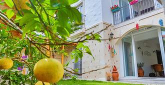 诺奥比尔阿拉卡提酒店 - 阿拉恰特 - 户外景观