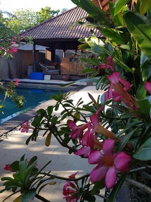 吉利异国别墅酒店 - 彭朗 - 游泳池