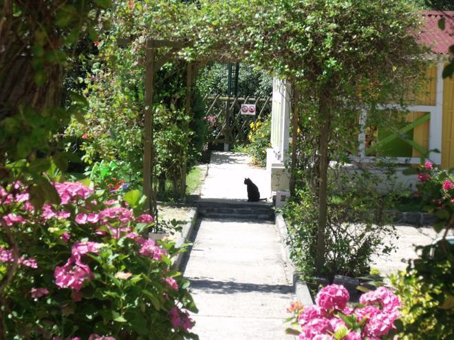 克洛斯罗宾逊酒店 - 迪耶普 - 户外景观