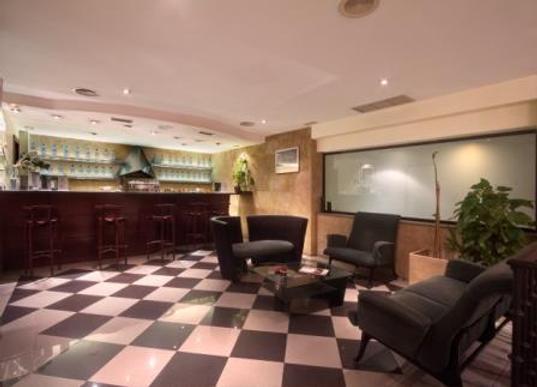 萨拉曼卡丝绸罗娜达尔巴酒店 - 萨拉曼卡 - 酒吧