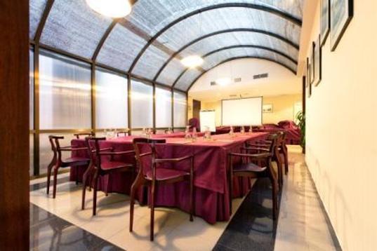 萨拉曼卡丝绸罗娜达尔巴酒店 - 萨拉曼卡 - 会议室
