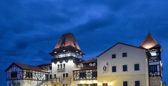 皇家城堡酒店 - 蒂米什瓦拉