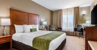 萨克拉门托大学区康福特茵酒店 - 萨克拉门托 - 睡房
