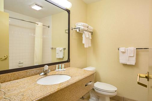 Nrg公园-医疗中心品质套房酒店 - 休斯顿 - 浴室