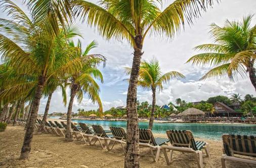 皇家水族馆渡假酒店 - 威廉斯塔德 - 海滩