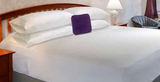勒斯布里奇骑士酒店 - 莱斯布里奇 - 睡房