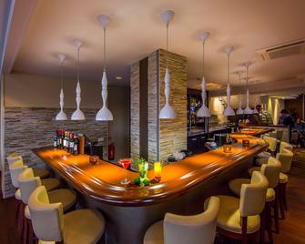 马斯特里赫特皇冠假日酒店 - 马斯特里赫特 - 酒吧