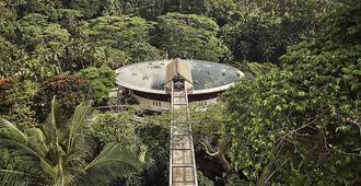 巴厘岛乌布四季度假村 - 乌布 - 户外景观