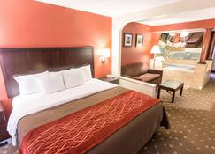 匹兹堡康福特茵酒店 - 匹兹堡 - 睡房