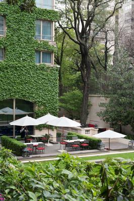 布宜诺斯艾利斯柏悦酒店 - 布宜诺斯艾利斯 - 景点