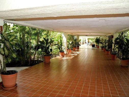 别墅帕莱索酒店 - 伊斯塔帕 - 户外景观