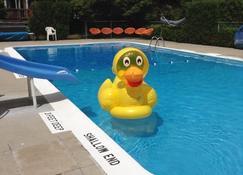 乡村汽车旅馆 - 乔治湖 - 游泳池
