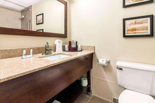 奥马哈康福特茵酒店 - 奥马哈 - 浴室
