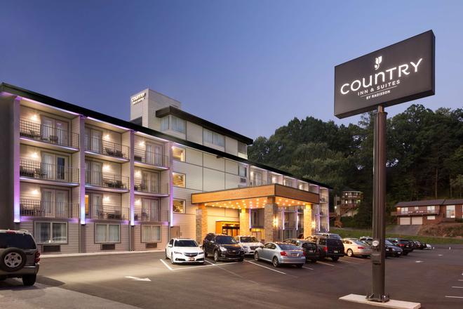 盖特林堡丽怡酒店 - 加特林堡 - 建筑
