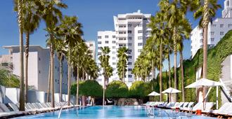 迈阿密德拉诺南海滩酒店 - 迈阿密海滩 - 游泳池