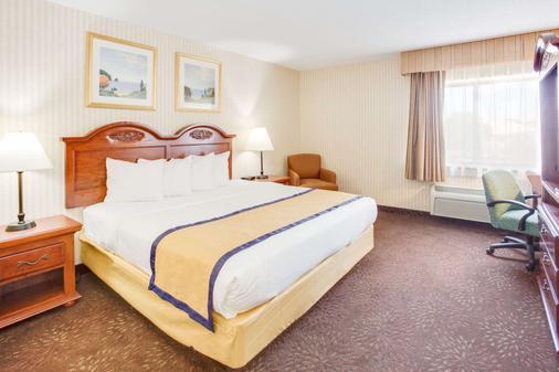 卡拉马祖百摩套房旅馆 - 卡拉马祖 - 睡房