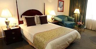 佩德雷加尔皇宫酒店 - 墨西哥城 - 睡房