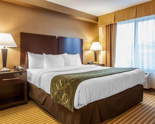 温纳奇康福特套房酒店 - 韦纳奇 - 睡房