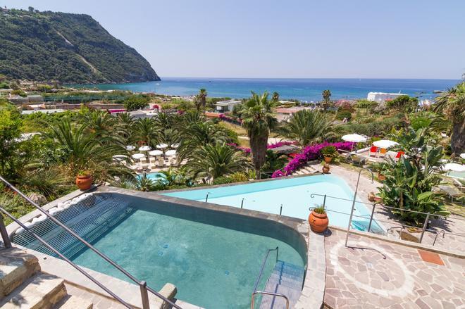 德查姆塞米勒米斯酒店 - 福利奥 - 游泳池