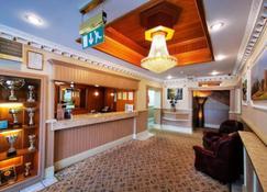 城堡酒店 - 梅瑟蒂德菲尔 - 柜台