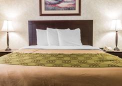 伊克诺旅店&套房酒店 - 大急流城 - 睡房