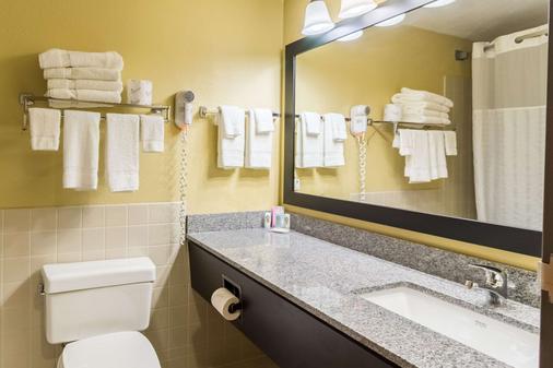 梅奥诊所区优质套房酒店 - 罗切斯特 - 浴室