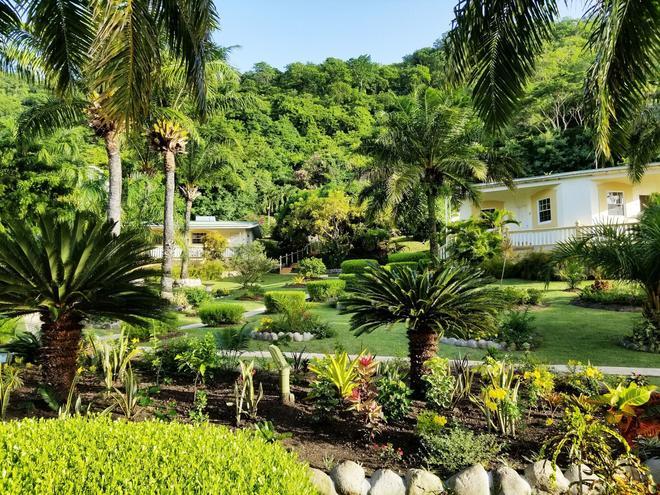 蓝色地平线花园度假酒店 - St. George's - 户外景观