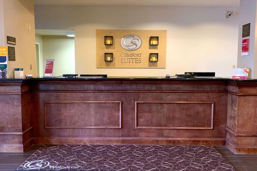 德克萨斯大道舒适套房酒店 - 大学城 - 柜台