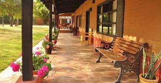 帕茨夸罗别墅花园酒店及rv公园 - 帕茨夸罗 - 露台
