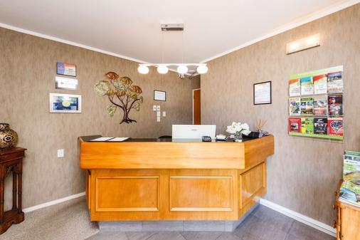 贝壳杉苑康福特茵酒店 - 北帕麥斯頓 - 柜台