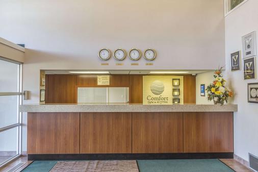 穆斯乔康福特茵酒店及套房 - 穆斯乔 - 柜台
