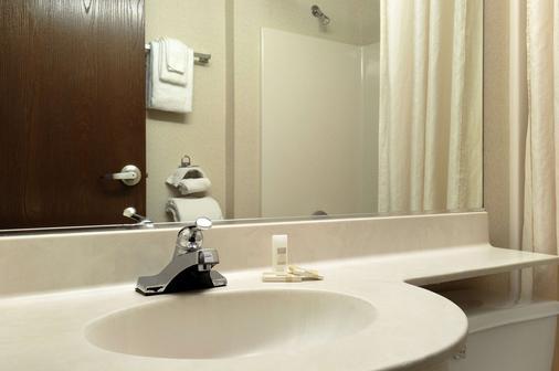 温布卢明顿/明尼阿波利斯麦克罗特客栈&套房 - 布卢明顿 - 浴室