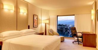 喜来登萨尔塔酒店 - 萨尔塔 - 睡房