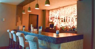 波托韦洛酒店 - 瓜达拉哈拉 - 酒吧