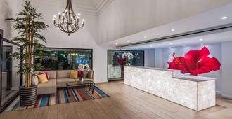 贝斯特韦斯特拉斯布来萨酒店 - 棕榈泉 - 柜台