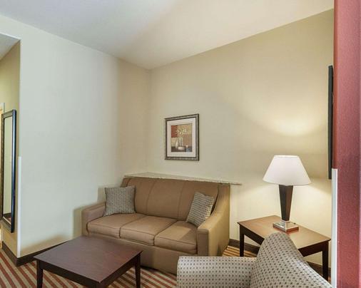中西六旗康福特套房酒店 - 圣安东尼奥 - 客厅