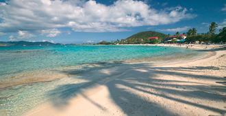 蓝宝石海滩度假酒店 - 圣托马斯岛 - 海滩