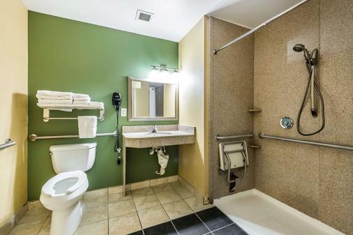 尚兹大学司丽普套房酒店 - 盖恩斯维尔 - 浴室
