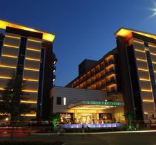 迪札亚棕榈园式酒店