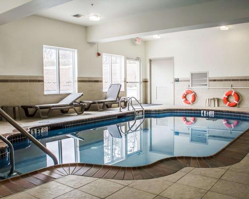 哈里斯堡-艾森豪威尔大道睡眠套房酒店 - 哈里斯堡 - 游泳池