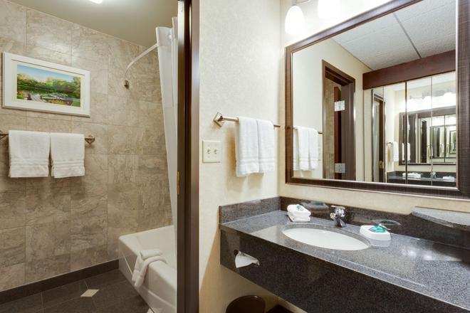 圣路易斯拱门德鲁里广场酒店 - 圣路易斯 - 浴室