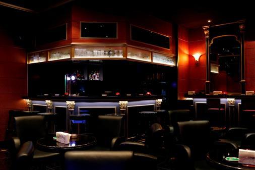迪拜百老汇酒店 - 迪拜 - 酒吧